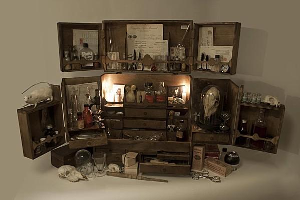 petites-curiosites-cabinet-de-curiosites-xl-04
