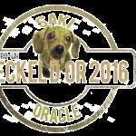 Teckel d'or 2016